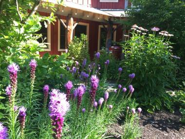 Smart Strategies for Pollinator Enhancements in Your Landscape Design